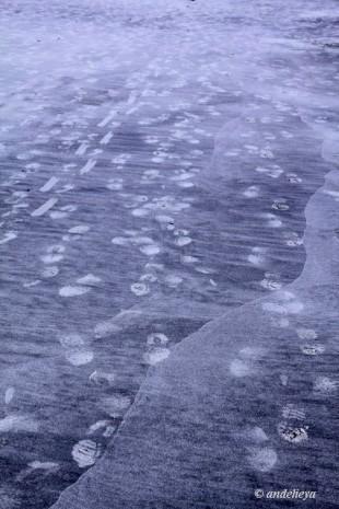 Footsteps_1