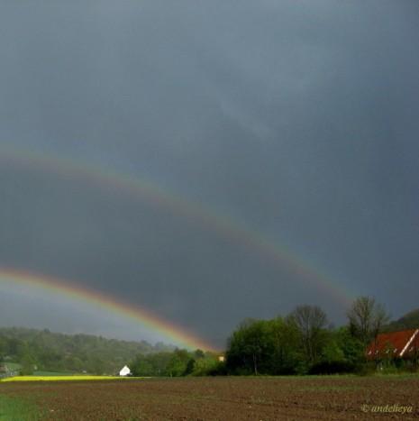 Rainbows End_1