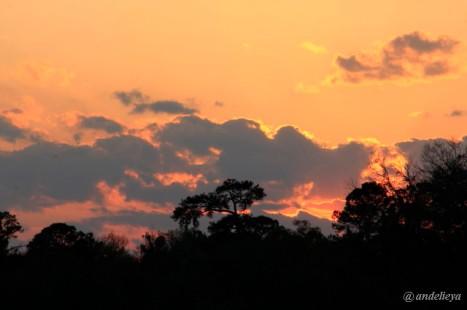 Sunset2_1