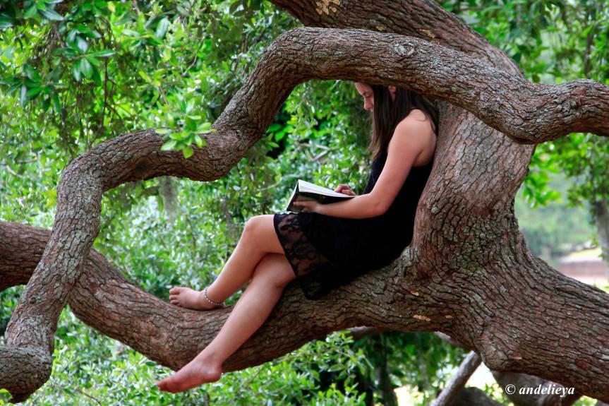 Book Fairy.jpg