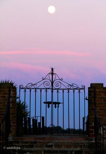 Middleton Place Gate2